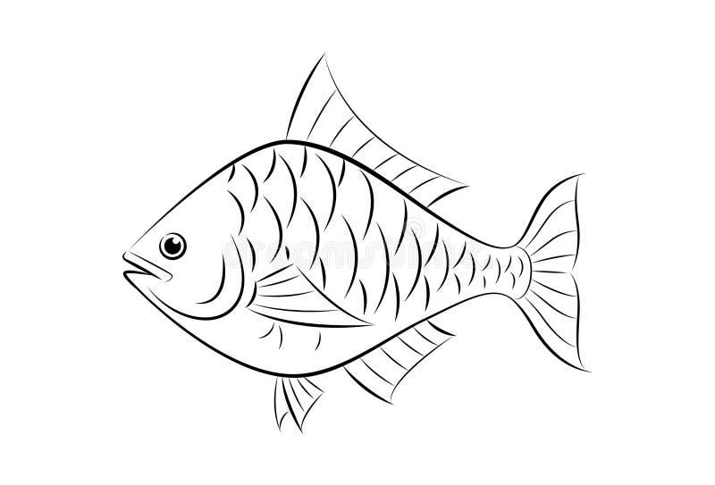 Dra fisken royaltyfri illustrationer