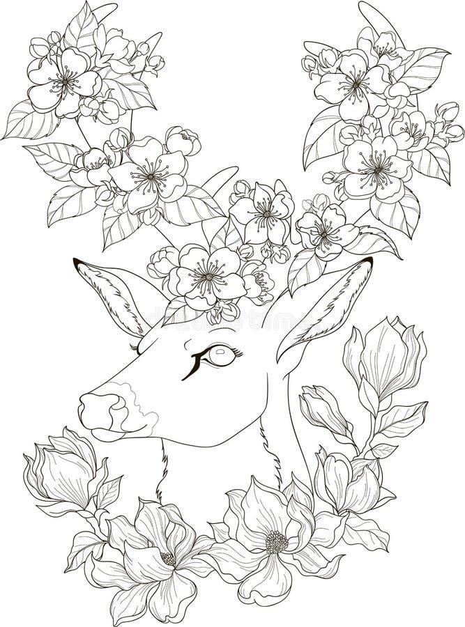 Dra hjortar med magnolia- och äppleblomningen i zentanglestil för vuxna färga sidor stock illustrationer