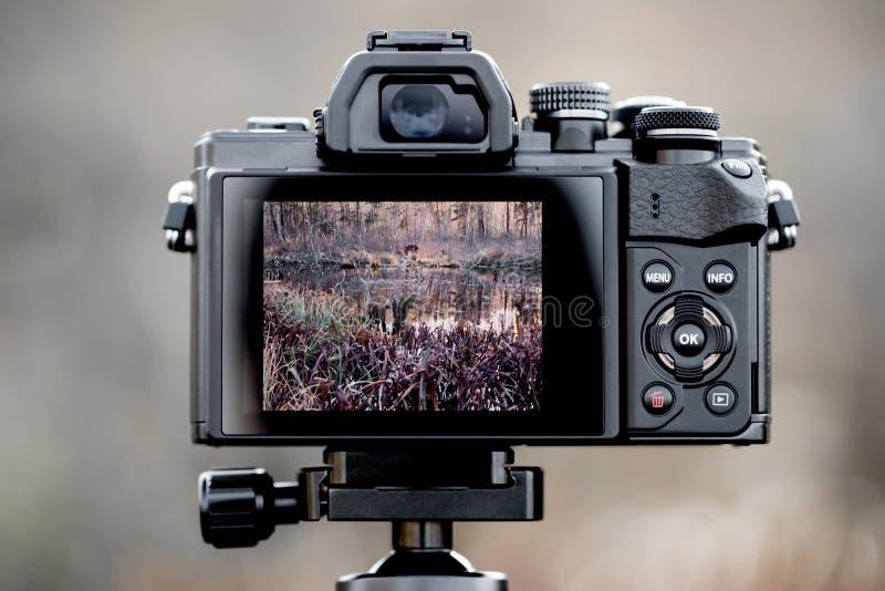 Dra tillbaka av en kamera royaltyfri foto