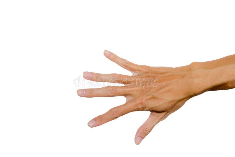 Dra tillbaka av rätt gömma i handflatan handen som isoleras på vit bakgrund Snabb bana den dåliga falska gesthanden betyder nr arkivbilder
