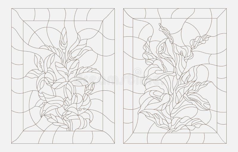 Dra upp konturerna av målat glassillustrationer av blommor, blommor för Callalilja och klockor vektor illustrationer