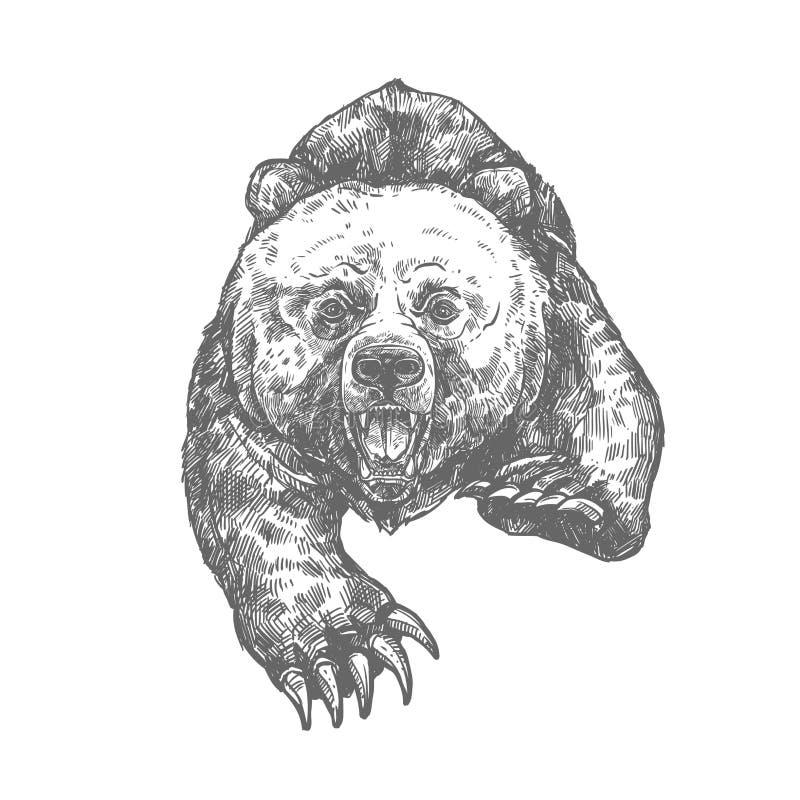 Draag aanval geïsoleerde schets van agressief dier royalty-vrije illustratie