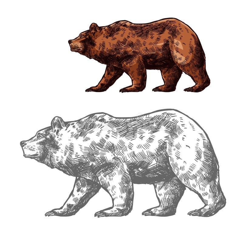 Draag dierlijke schets van het lopen van bruine grizzly royalty-vrije illustratie