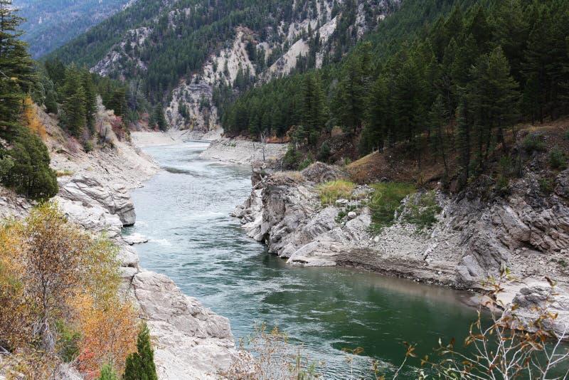Draag Rivier in de Bergen van Wyoming stock afbeelding