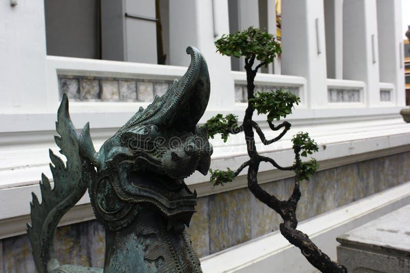 Draak met boom die de ingang bewaken aan de tempel royalty-vrije stock afbeelding
