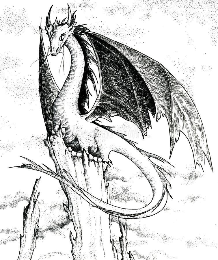 Draak - zwart-witte illustratie stock illustratie
