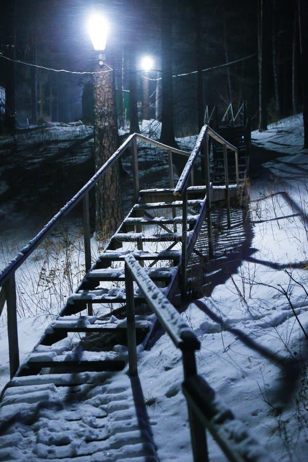 Drabina w zimy drewnie przy nocą obraz stock