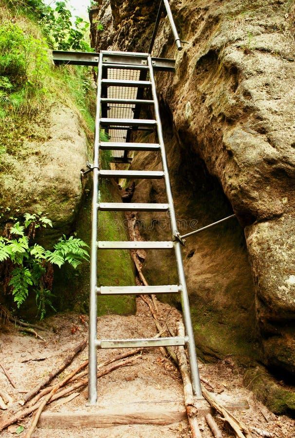 Drabinowy schodowy pięcie na górze przez ferrata fotografia royalty free