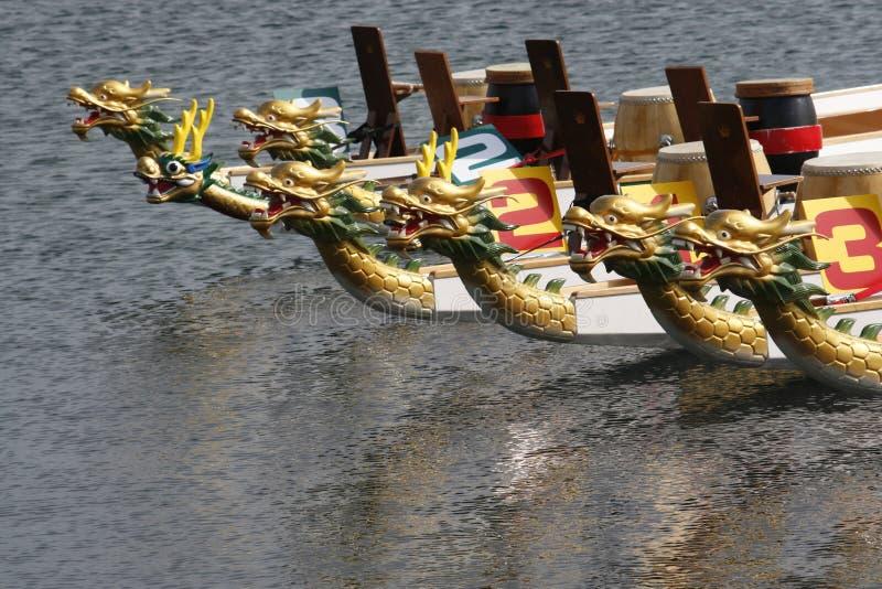 Dracheboote ganz ausgerichtet lizenzfreie stockfotografie