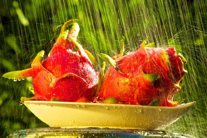 Drachefrucht im Regen lizenzfreie stockbilder