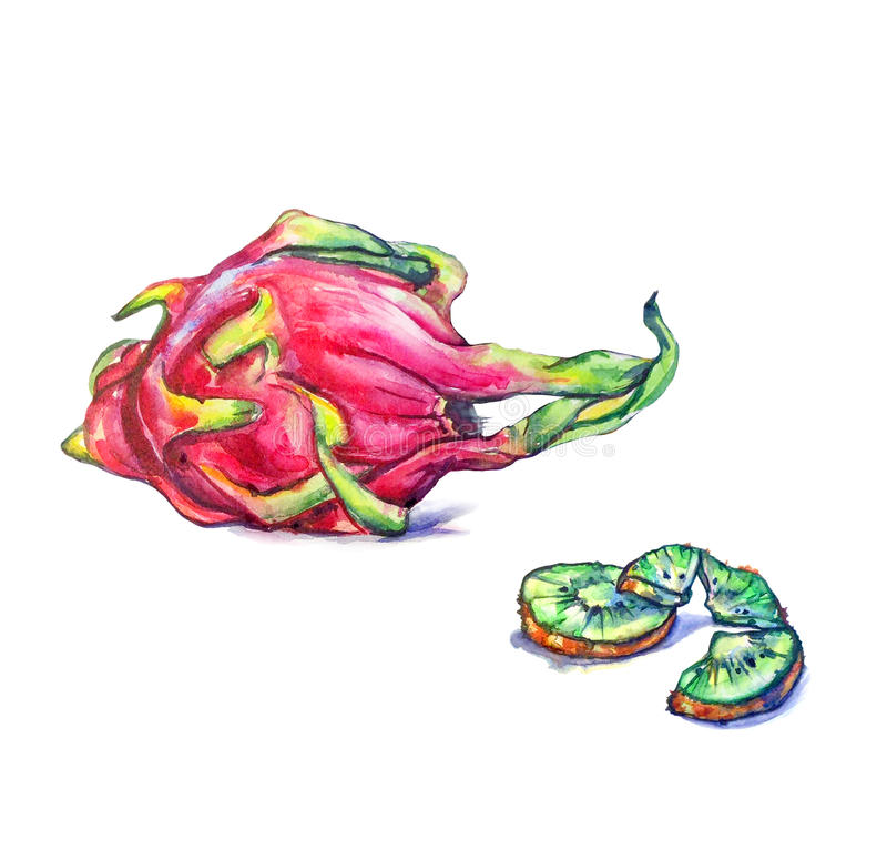 Drachefrucht und -kiwi lizenzfreies stockbild