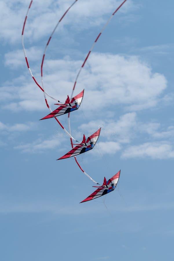 Drachen, die in Himmel fliegen stockfotos