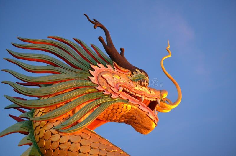 Draco del dragón y cielo azul fotos de archivo