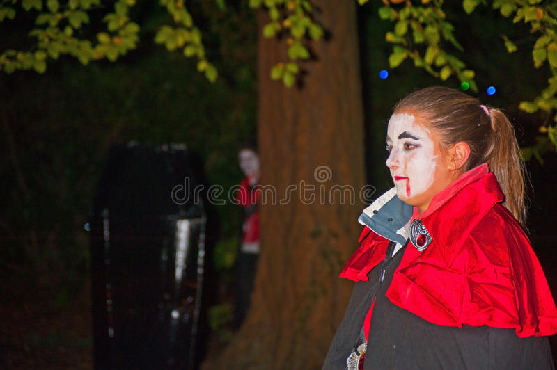 Download Dracula's wife ? editorial image. Image of ness, wife - 27376620
