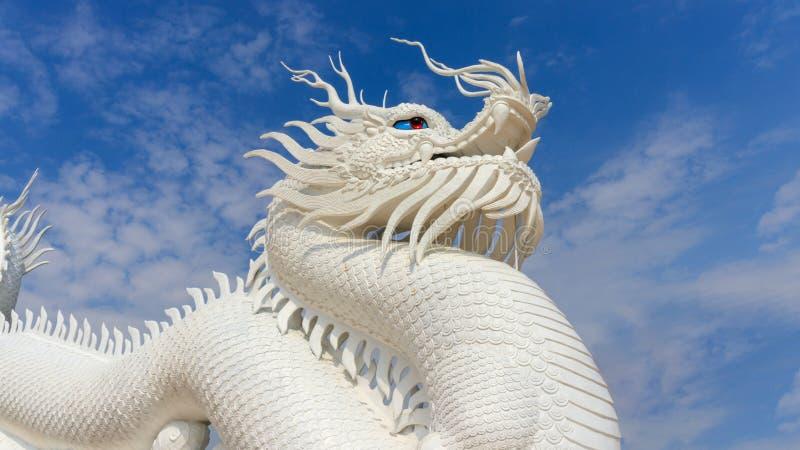 Dragão branco no céu foto de stock royalty free