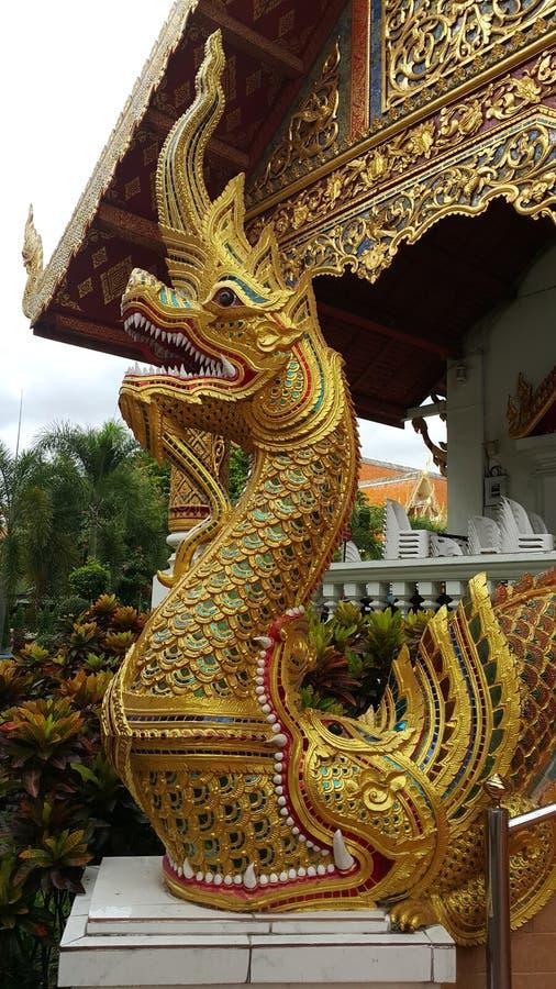 Dragón en el templo imagen de archivo libre de regalías