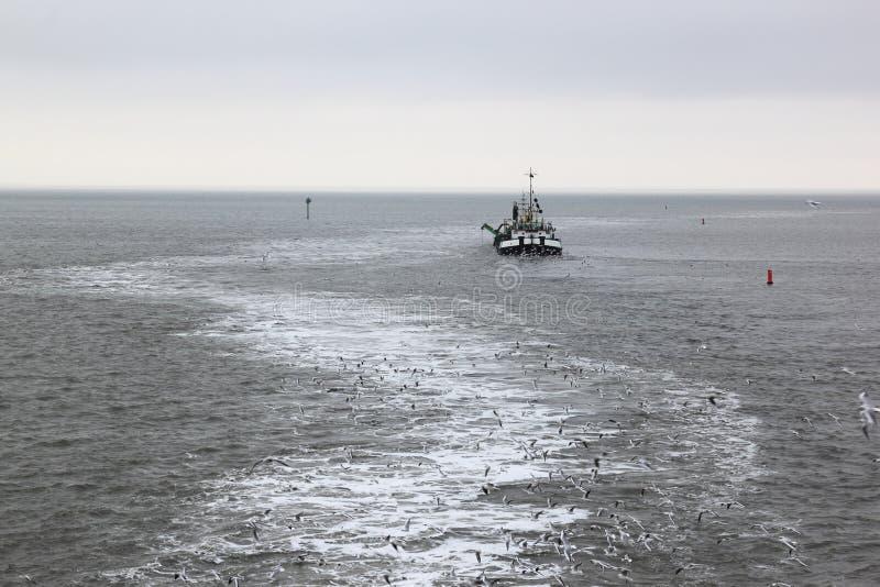Draga de trabajo adentro en el mar de Wadden cerca de la isla de Ameland fotos de archivo libres de regalías