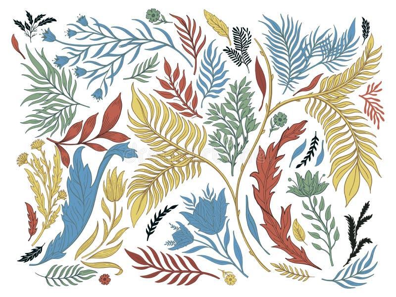 Dragen abstrakt hand för naturuppsättningsamling Etnisk prydnad, blom- tryck, textiltyg, botanisk beståndsdel retro stiltappning vektor illustrationer