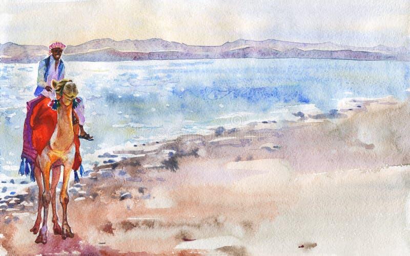 Dragen arabisk man för vattenfärg hand på kamel på stranden stock illustrationer
