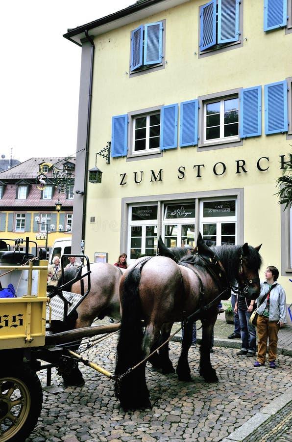 Dragen häst och gångare arkivfoton