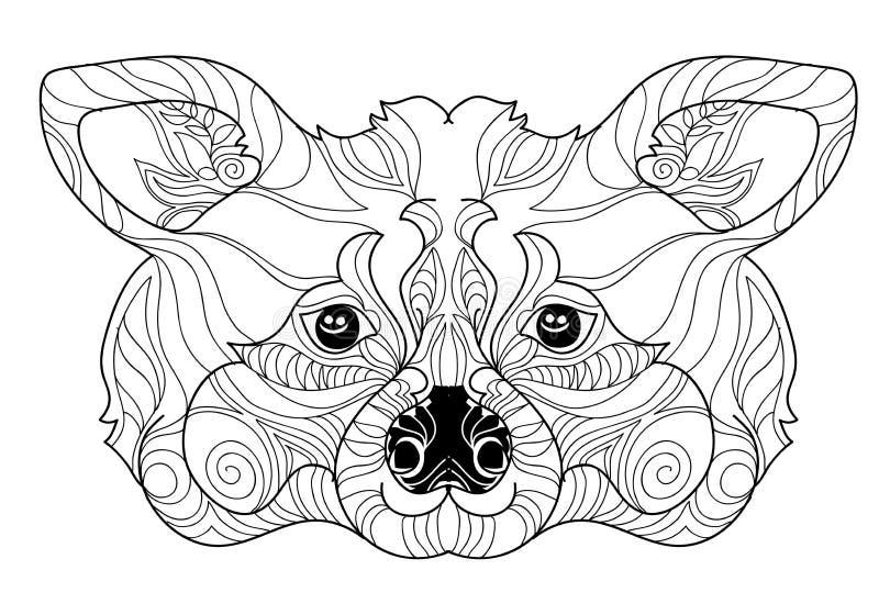 Dragen hand för klotter för Zentangle tvättbjörnhuvud vektor illustrationer