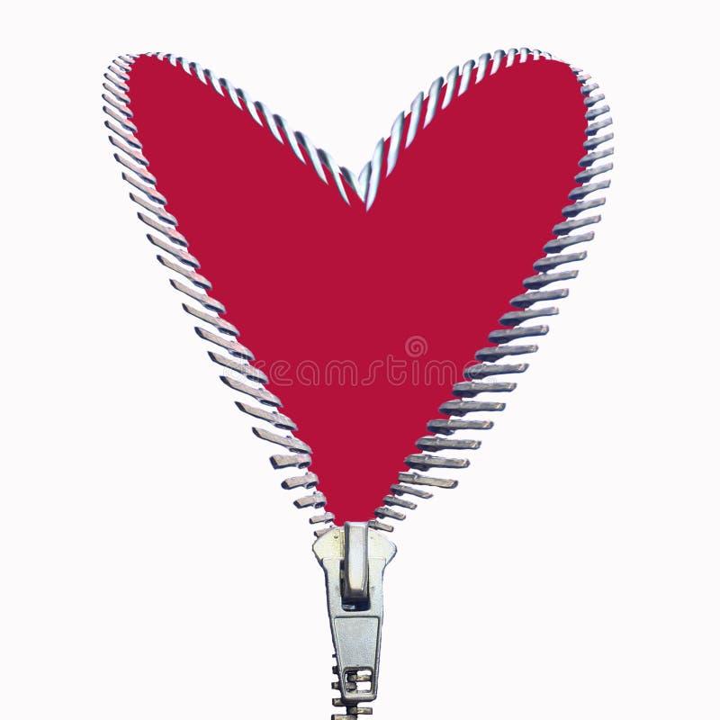 dragen igen blixtlåset på hjärta arkivbilder
