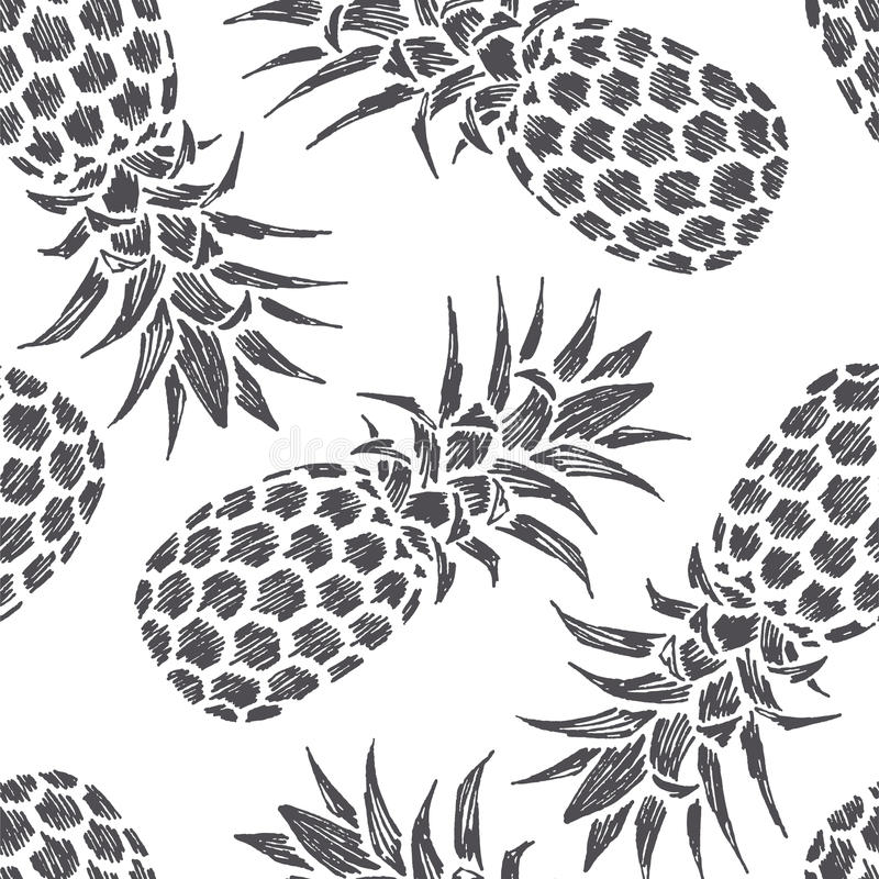 Dragen illustration för tappning hand av ananas ny fruktsommar stock illustrationer
