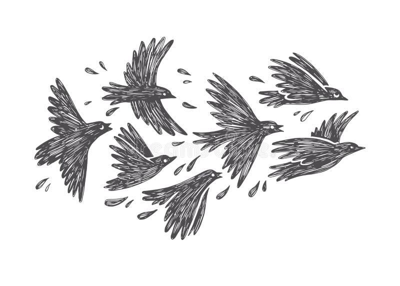 Dragen illustration för vektor hand av flygflocken av fåglar royaltyfri illustrationer