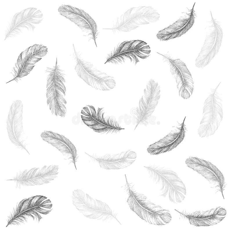 Dragen stil för fjädermodell hand Hand dragen tappningdesignuppsättning royaltyfri illustrationer