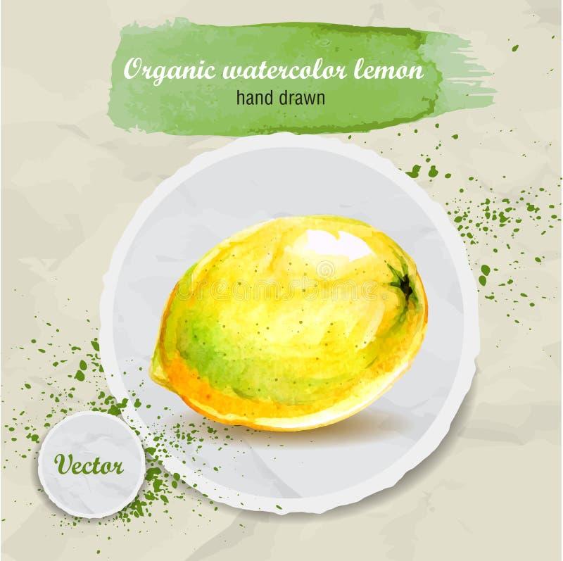 Dragen sur citron för vektorvattenfärg hand på rundapappersstycke royaltyfri illustrationer