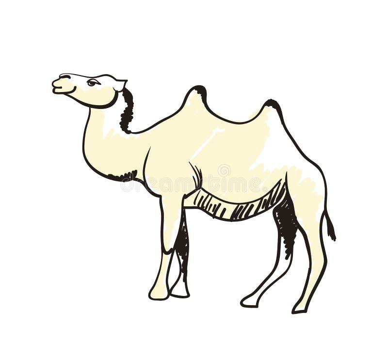 Dragen symbol för arabisk kamel hand stock illustrationer