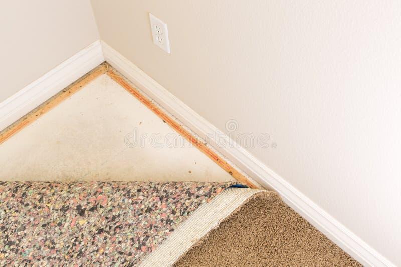 Dragen tillbaka matta och stoppning i rum arkivbild
