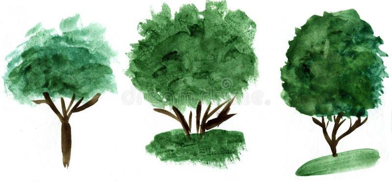 Dragen trädillustration för vattenfärg hand Naturdesignbeståndsdelar vektor illustrationer