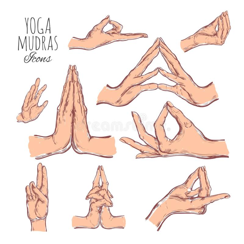 Dragen uppsättning för vektor hand av mudras Isolerat på vit yoga andlighet royaltyfri illustrationer