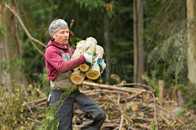 Dragende het brandhoutrondes van de arbeider stock foto's
