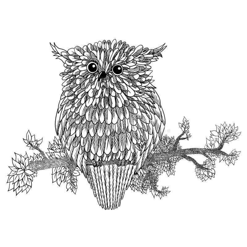 Dragit ugglasammanträde för vektor hand på filial Svartvit zentanglekonst mönstrad illustration för antistress färgläggning royaltyfri illustrationer