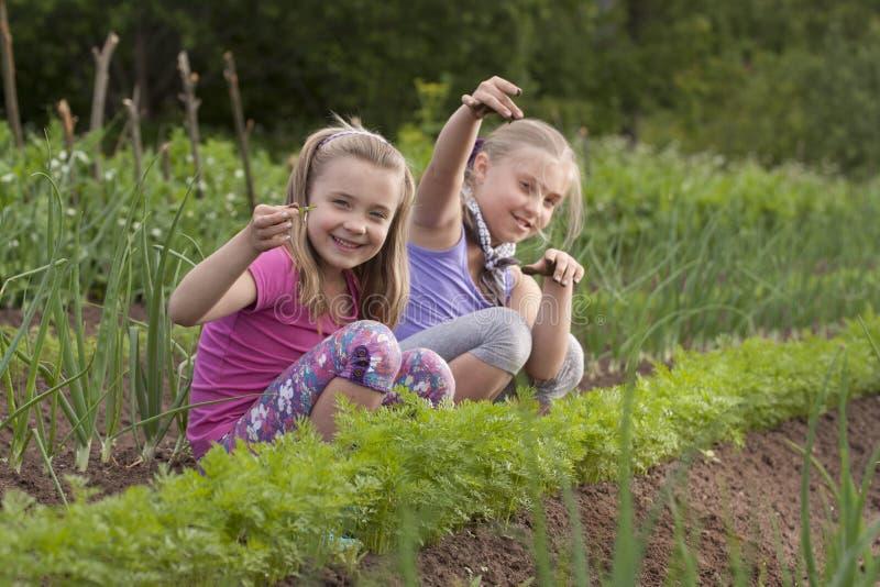 dragna systrar två weeds arkivfoton