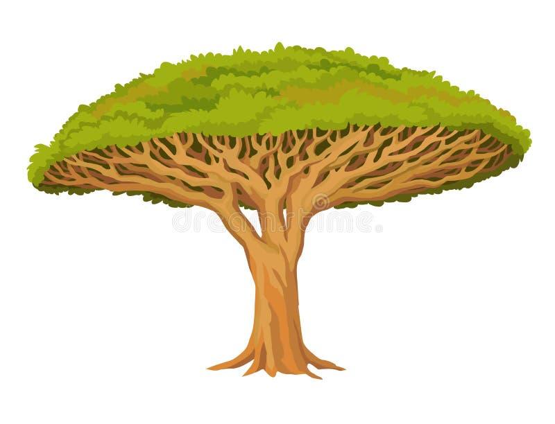 Drago dell'albero di animazione Pianta rara sacra illustrazione di stock