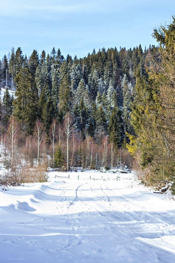 dragobrat χειμώνας της Ουκρανίας βουνών τοπίων Βουνά στο χιόνι Το πρώτο χιόνι στα βουνά στοκ φωτογραφίες