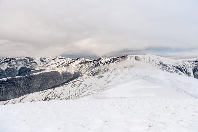 dragobrat krajobrazowa halna Ukraine zima obraz royalty free