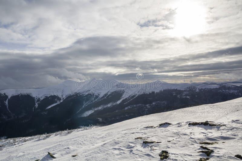 dragobrat krajobrazowa halna Ukraine zima Szeroki widok odlegli odrewniali halni szczyty zakrywający z błyszczącym śniegiem, lode zdjęcia royalty free