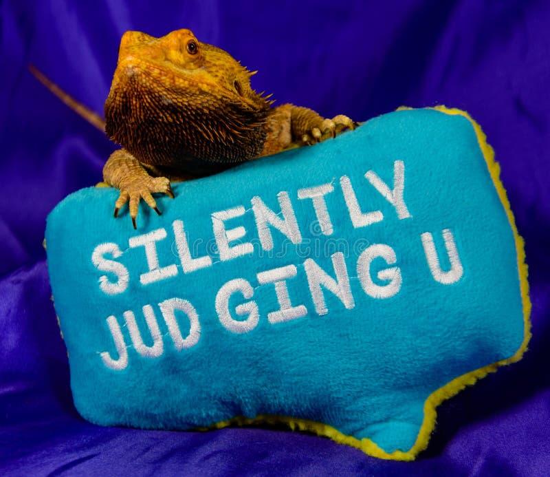 Dragon barbu de jugement fâché photos libres de droits