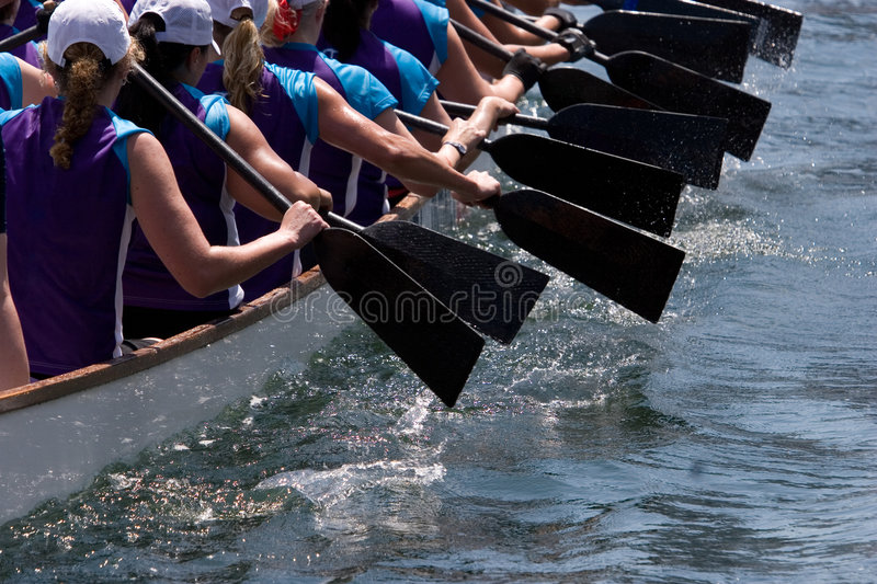 Download Dragon Boat stock photo. Image of racers, boat, caps, water - 2515722