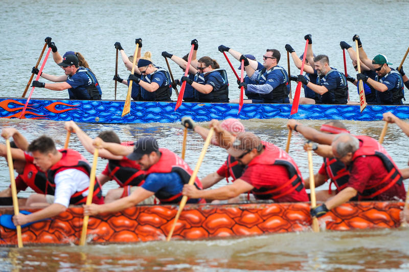 Dragon Boat Race arkivfoton