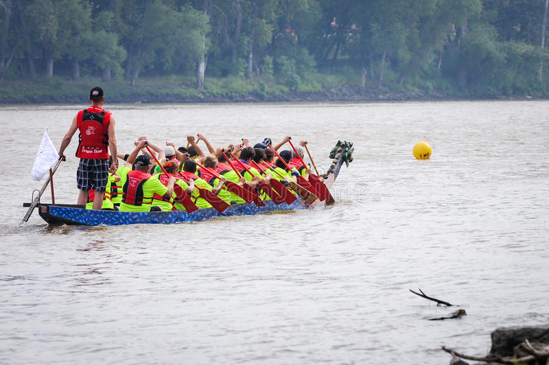 Dragon boat race. September 12, 2015 – Red river in Winnipeg, MB, Canada – Team building activity during rowing dragon boat race royalty free stock image