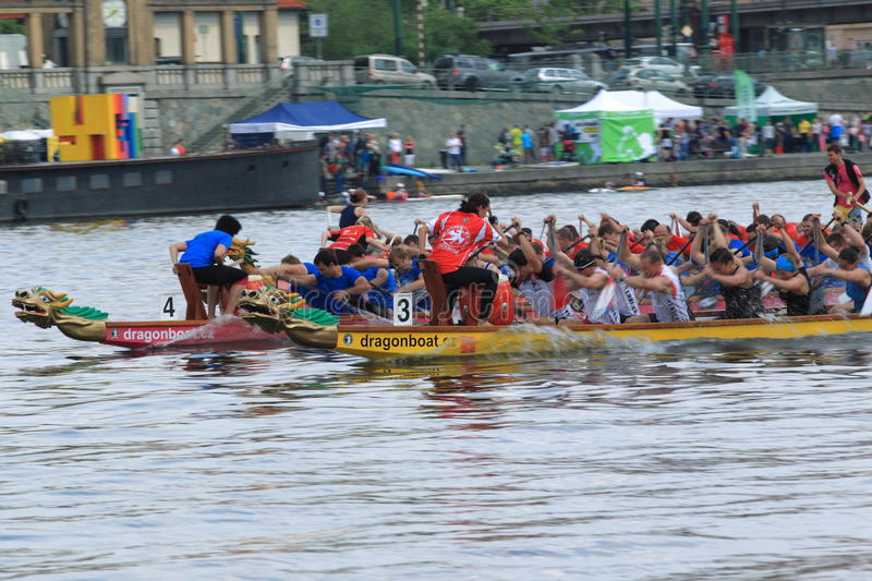 Dragon boats in Prague. Dragon boats race in Prague held on 24.5.2014 in Prague royalty free stock image