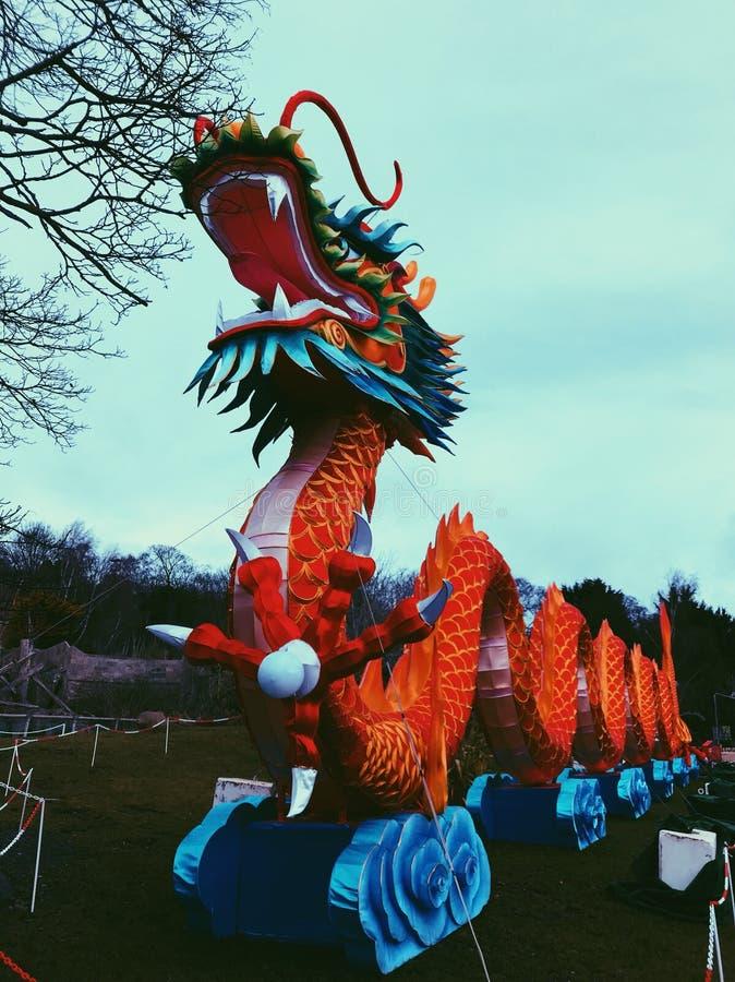 Dragon chinois de lanterne images stock