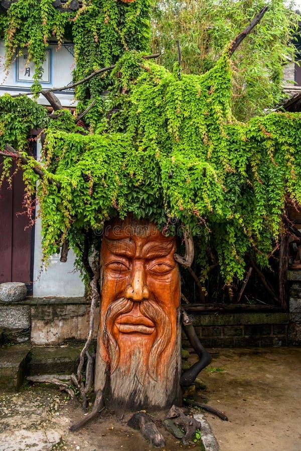 Dragon City i Yunnan Dali det gamla trädet royaltyfri foto
