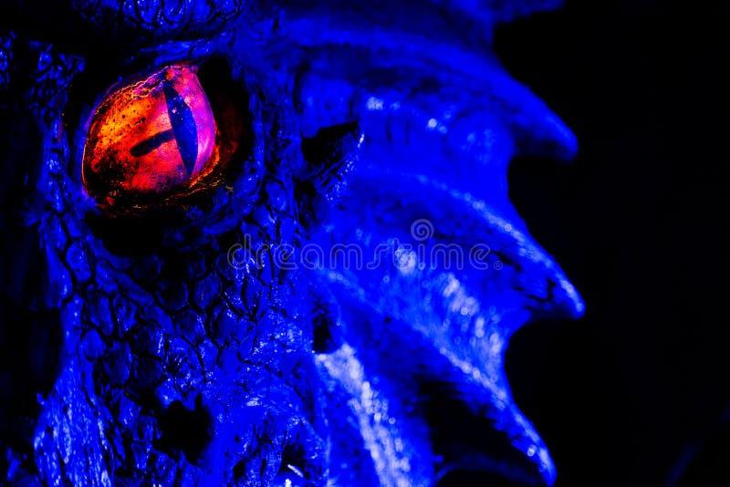 Dragon eye stock images