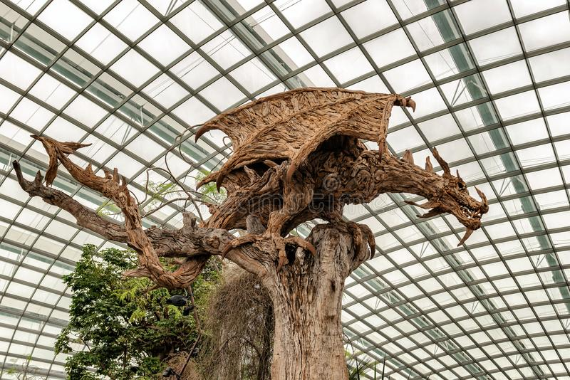 Dragon in Flower Dome conservatory. Gardens by the Bay. Singapor. Dragon statue made of wood roots inside flower dome conservatory at Gardens by the Bay in stock image